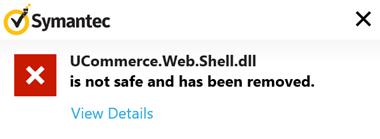 Symantec error