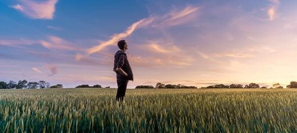 A man in a field looking into the blue sky